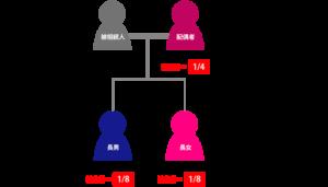 被相続人の配偶者と兄弟姉妹が相続人の場合の遺留分割合